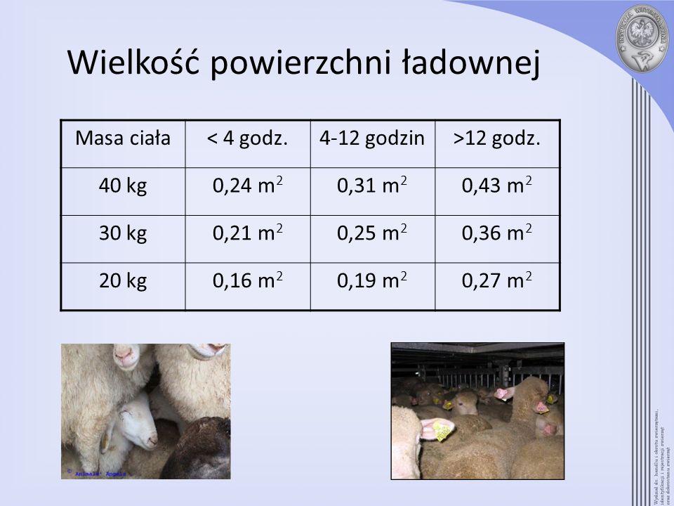 Masa ciała< 4 godz.4-12 godzin>12 godz. 40 kg0,24 m 2 0,31 m 2 0,43 m 2 30 kg0,21 m 2 0,25 m 2 0,36 m 2 20 kg0,16 m 2 0,19 m 2 0,27 m 2 Wielkość powie