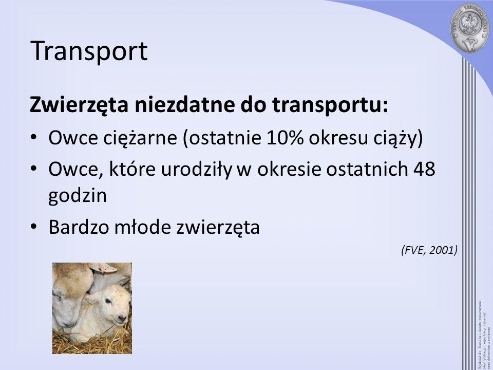 Transport Zwierzęta niezdatne do transportu: Owce ciężarne (ostatnie 10% okresu ciąży) Owce, które urodziły w okresie ostatnich 48 godzin Bardzo młode
