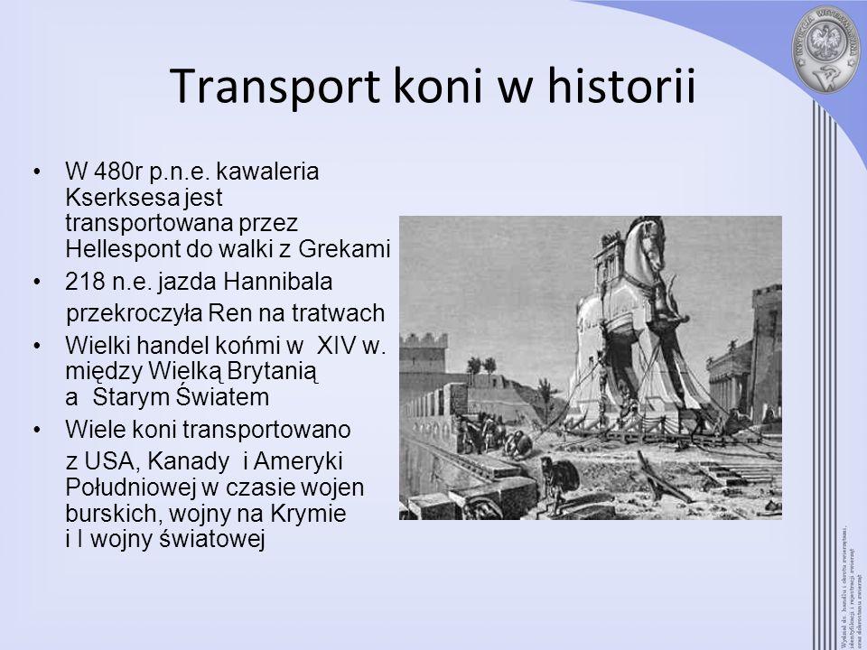 Transport koni w historii W 480r p.n.e. kawaleria Kserksesa jest transportowana przez Hellespont do walki z Grekami 218 n.e. jazda Hannibala przekrocz