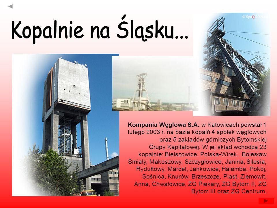 Kompania Węglowa S.A. w Katowicach powstał 1 lutego 2003 r. na bazie kopalń 4 spółek węglowych oraz 5 zakładów górniczych Bytomskiej Grupy Kapitałowej
