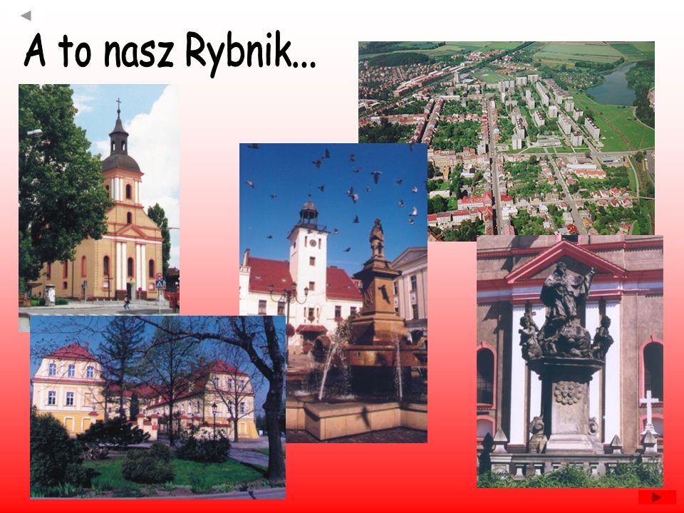 Pierwsze ślady osadnictwa na terenie ziemi wodzisławskiej sięgają epoki kamiennej.
