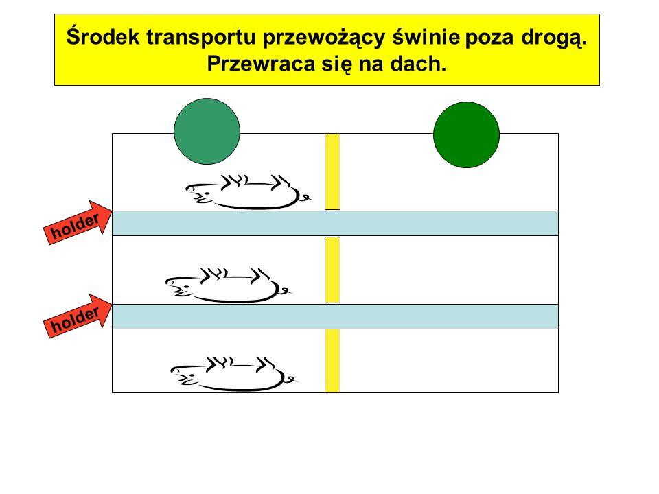 Środek transportu przewożący świnie poza drogą. Przewraca się na dach. holder
