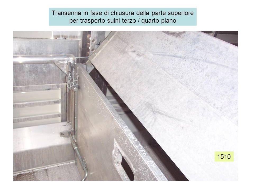 1510 Transenna in fase di chiusura della parte superiore per trasporto suini terzo / quarto piano