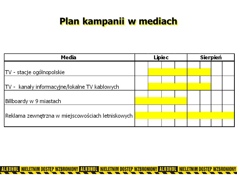 Plan kampanii w mediach