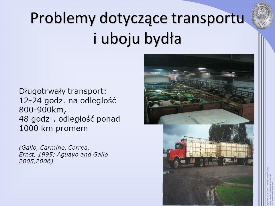 Problemy dotyczące transportu i uboju bydła Duże zagęszczenie w czasie transportu: średnio 435 kg/m2 (po przybyciu) zakres 268 – 632 kg/m2 (Gallo, Warriss, Knowles, Negrón, Valdés, Mencarini, 2005) 32,4% z 413 transportów bydła, poddanych kontroli było przeładowane > 500 kg/m2