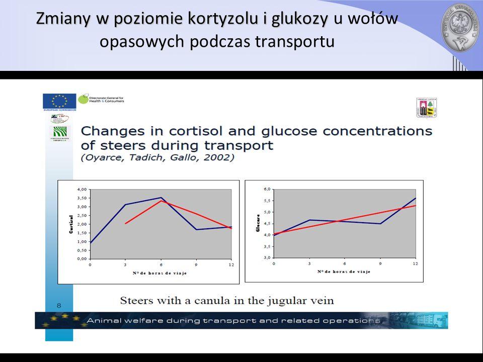 Zmiany w poziomie kortyzolu i glukozy Zmiany w poziomie kortyzolu i glukozy u wołów opasowych podczas transportu (Oyarce, Tadich, Gallo, 2002) Poziom kortyzolu do 6 godziny transportu rośnie, po czym zaczyna opadać Poziom glukozy rośnie przez cały czas Badanie przeprowadzono u wołów z kaniulą w żyle szyjnej