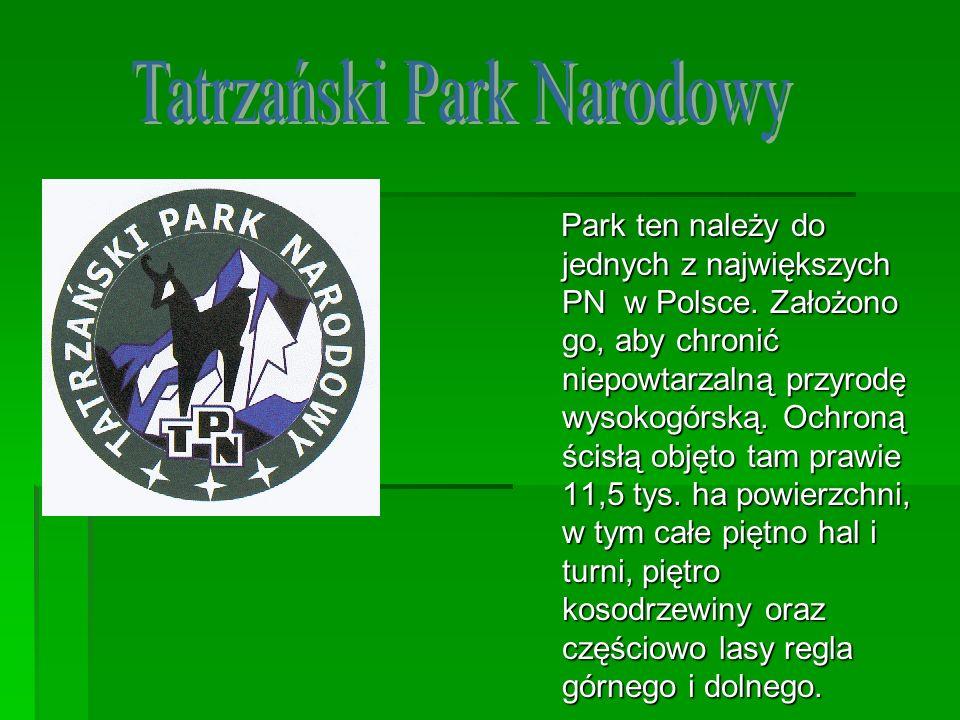Park ten należy do jednych z największych PN w Polsce. Założono go, aby chronić niepowtarzalną przyrodę wysokogórską. Ochroną ścisłą objęto tam prawie
