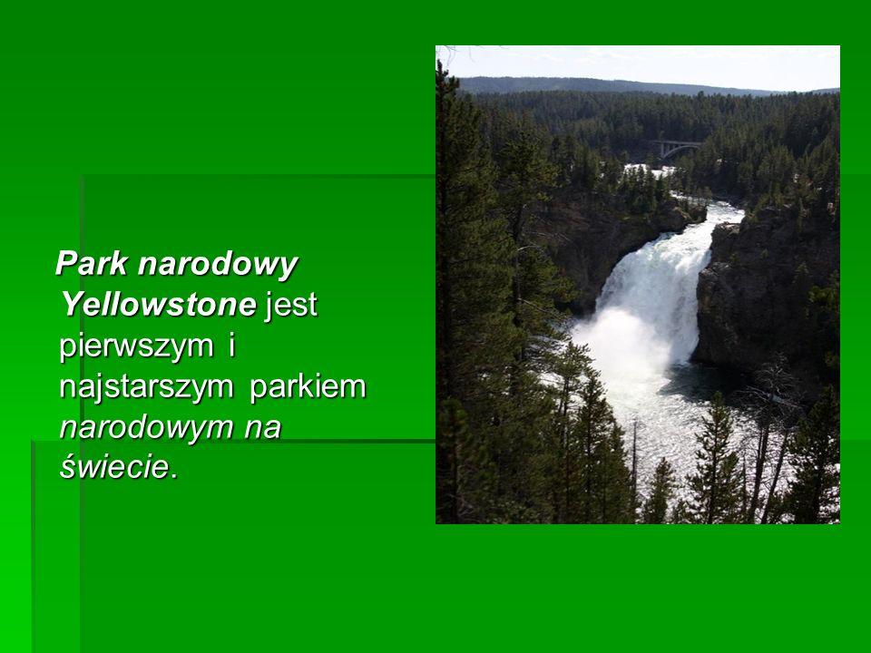 Obejmuje rozległe obszary bagienne, lasy, a także śródlądowe wydmy.