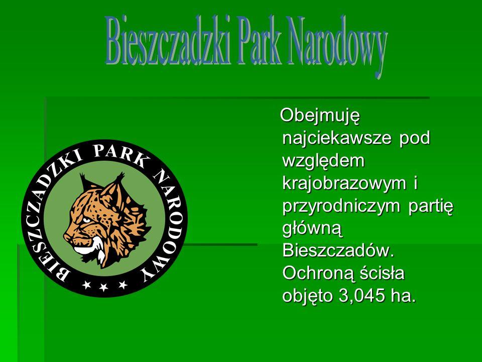Obejmuję najciekawsze pod względem krajobrazowym i przyrodniczym partię główną Bieszczadów. Ochroną ścisła objęto 3,045 ha. Obejmuję najciekawsze pod