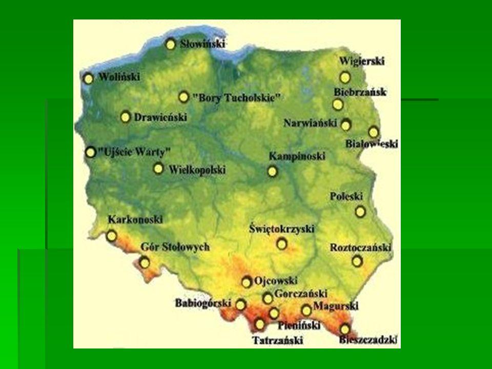 Park obejmuje jedyny w Polsce obszar gór płytkowych.