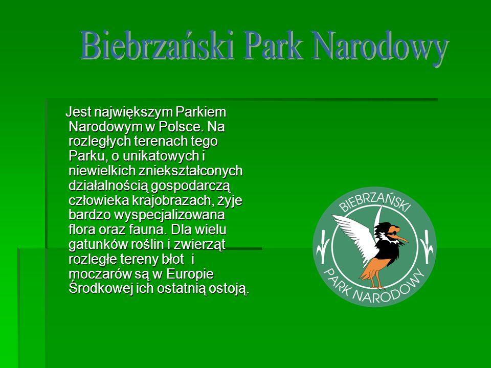 Jest największym Parkiem Narodowym w Polsce. Na rozległych terenach tego Parku, o unikatowych i niewielkich zniekształconych działalnością gospodarczą