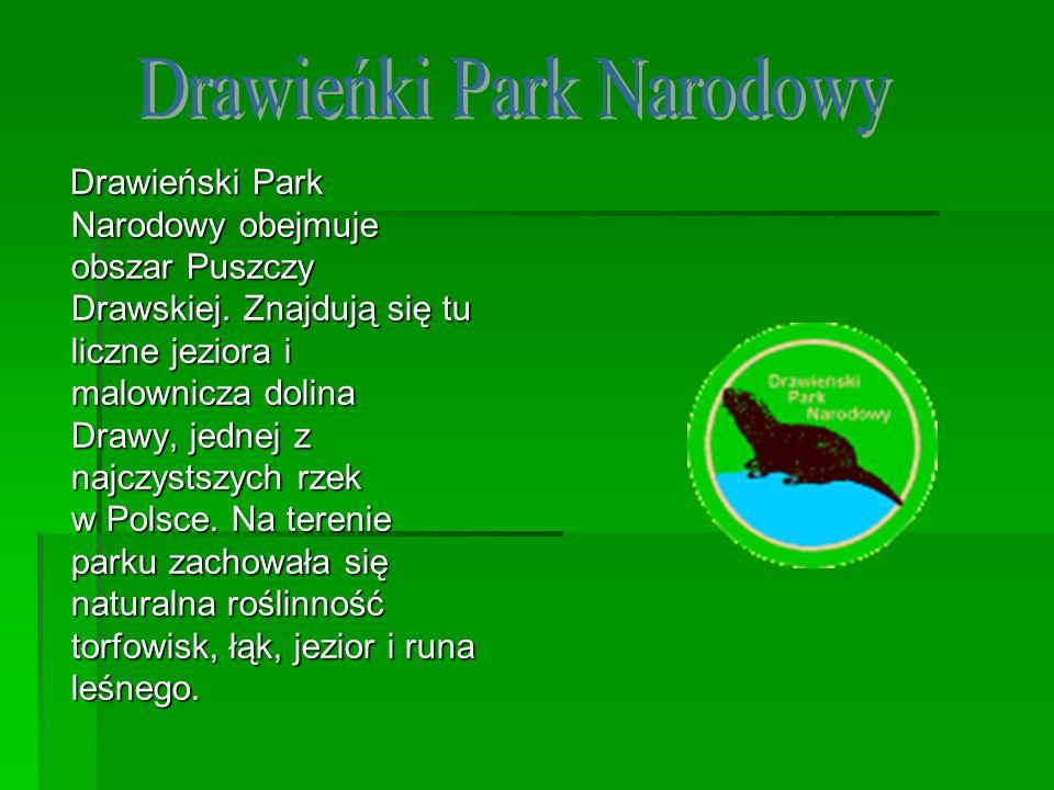 Drawieński Park Narodowy obejmuje obszar Puszczy Drawskiej. Znajdują się tu liczne jeziora i malownicza dolina Drawy, jednej z najczystszych rzek w Po