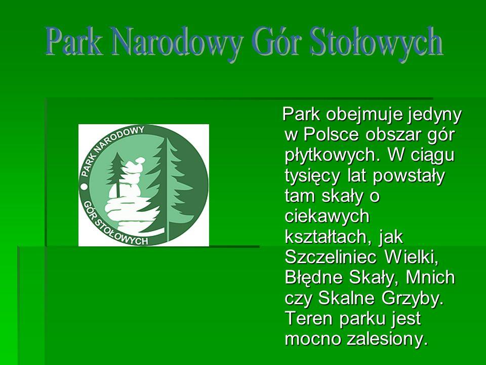 Park obejmuje jedyny w Polsce obszar gór płytkowych. W ciągu tysięcy lat powstały tam skały o ciekawych kształtach, jak Szczeliniec Wielki, Błędne Ska