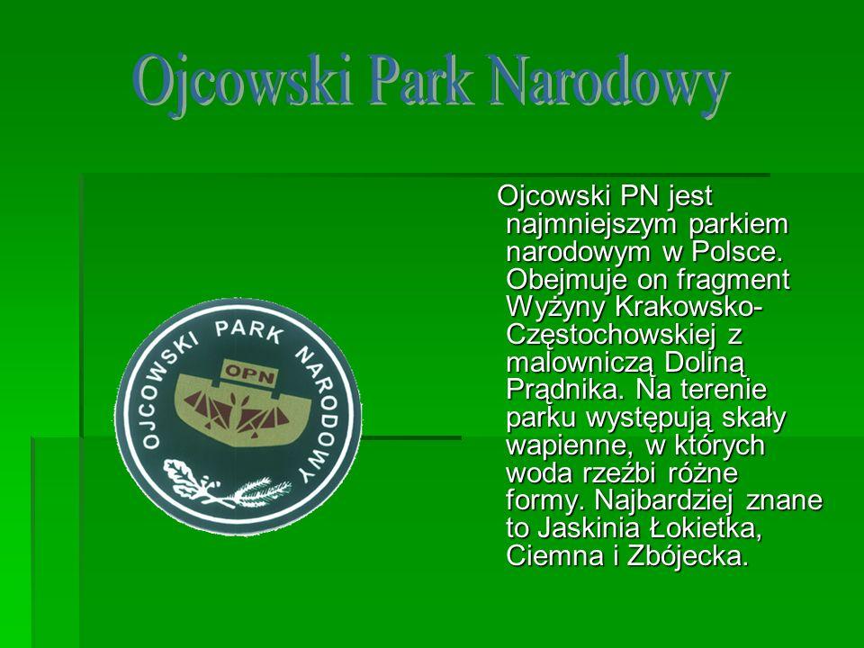 Ojcowski PN jest najmniejszym parkiem narodowym w Polsce. Obejmuje on fragment Wyżyny Krakowsko- Częstochowskiej z malowniczą Doliną Prądnika. Na tere