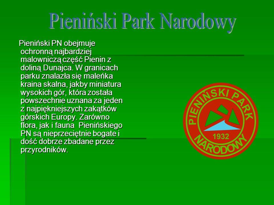 Pieniński PN obejmuje ochronną najbardziej malowniczą część Pienin z doliną Dunajca. W granicach parku znalazła się maleńka kraina skalna, jakby minia