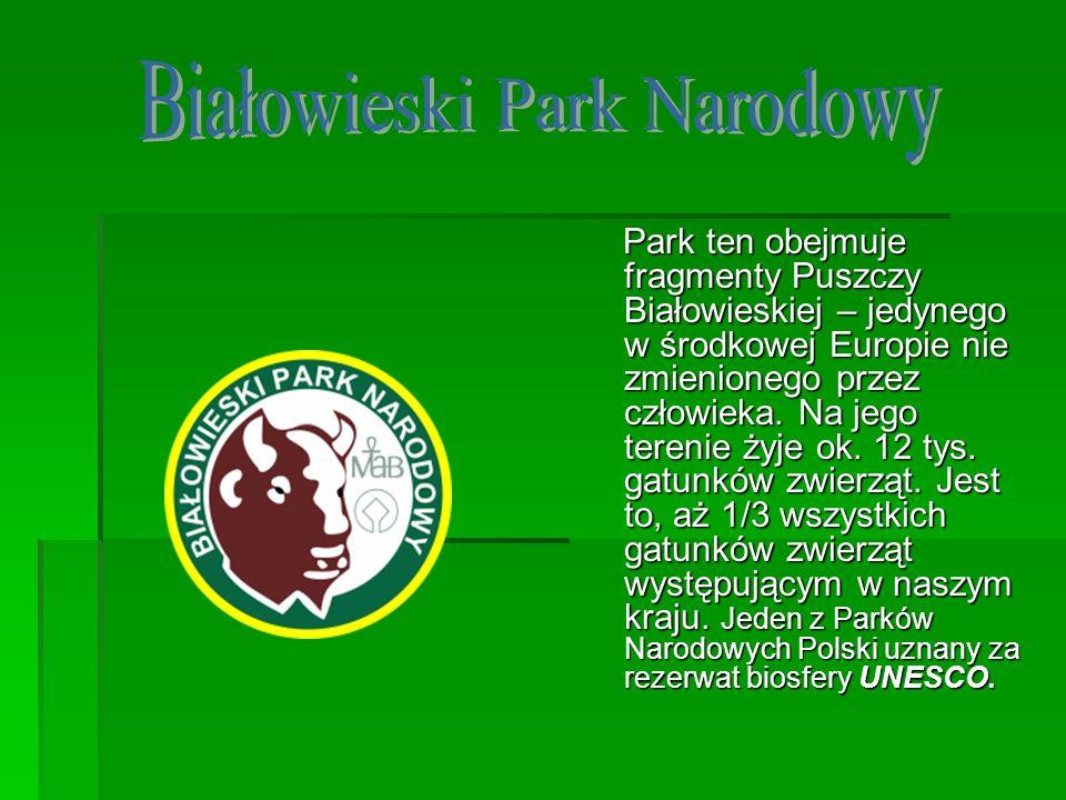 Park ten obejmuje fragmenty Puszczy Białowieskiej – jedynego w środkowej Europie nie zmienionego przez człowieka. Na jego terenie żyje ok. 12 tys. gat