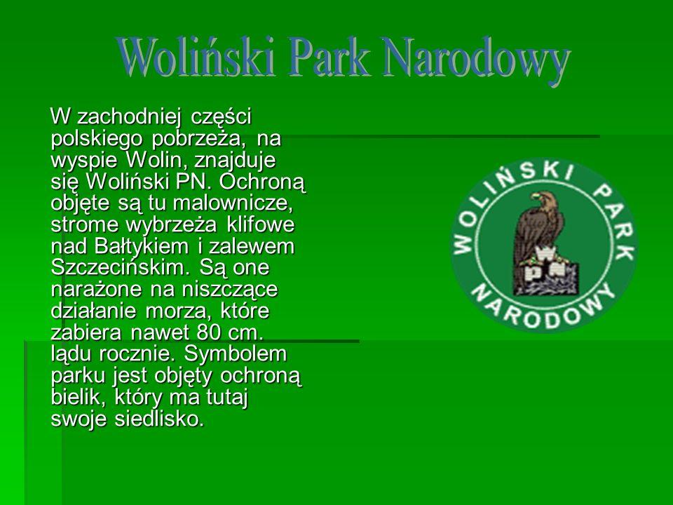 W zachodniej części polskiego pobrzeża, na wyspie Wolin, znajduje się Woliński PN. Ochroną objęte są tu malownicze, strome wybrzeża klifowe nad Bałtyk
