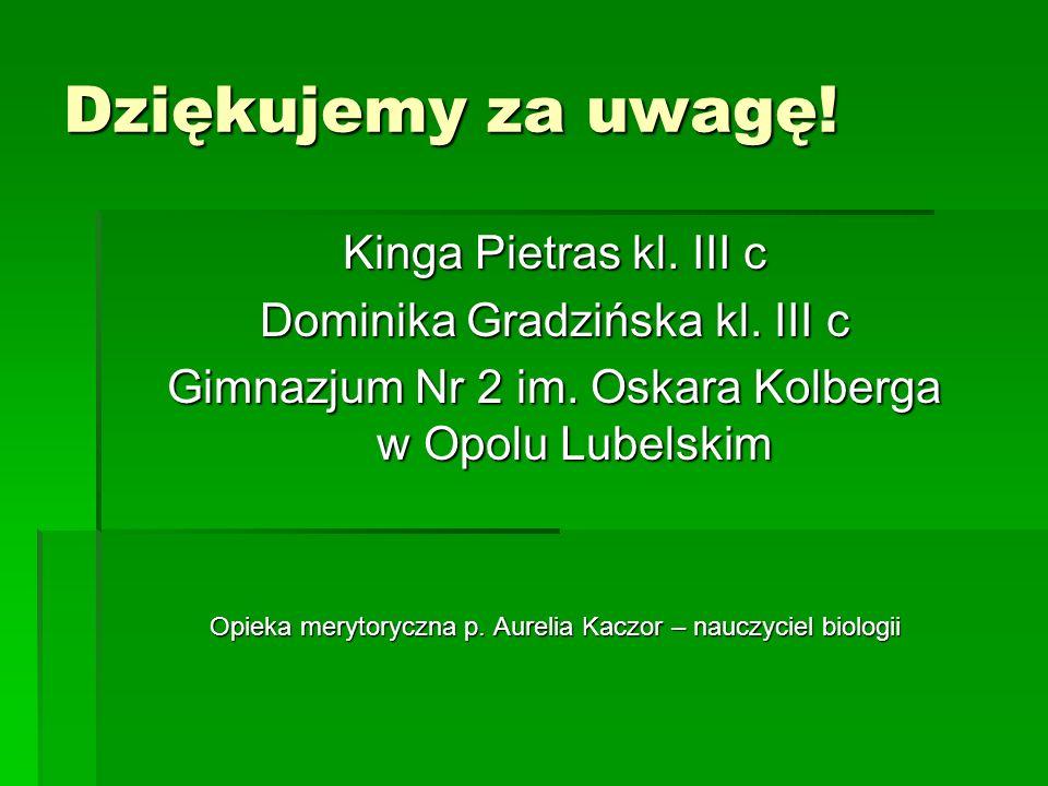 Dziękujemy za uwagę! Kinga Pietras kl. III c Dominika Gradzińska kl. III c Gimnazjum Nr 2 im. Oskara Kolberga w Opolu Lubelskim Opieka merytoryczna p.