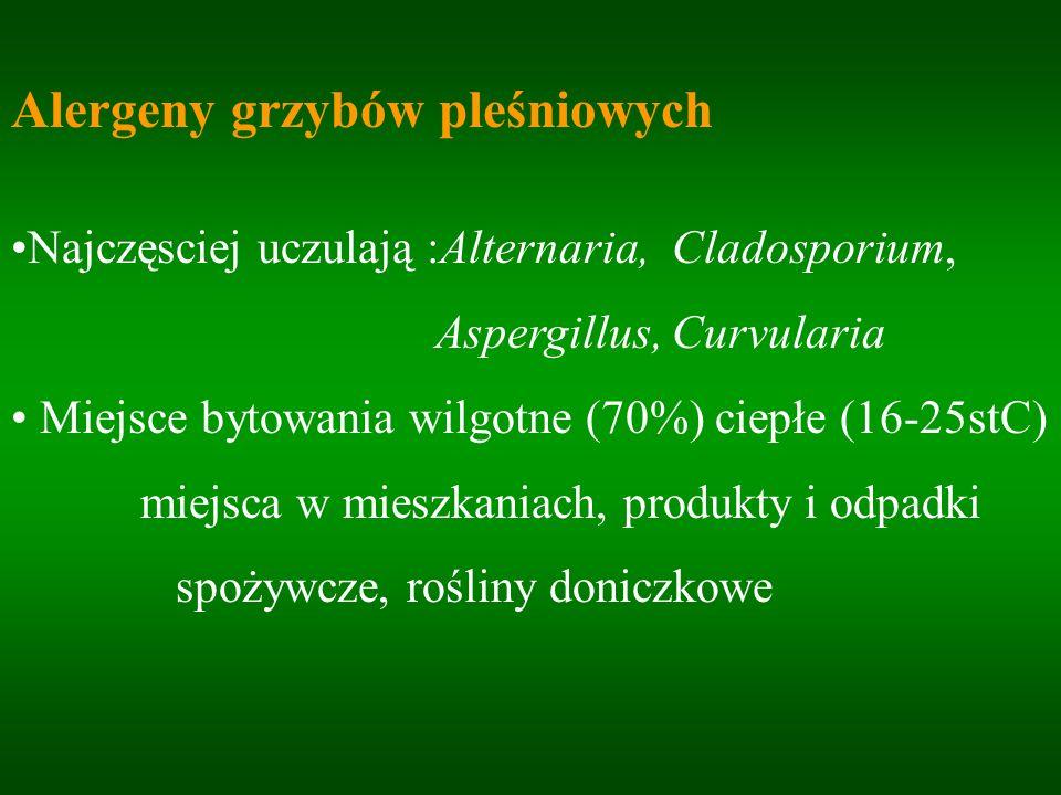 Alergeny grzybów pleśniowych Najczęsciej uczulają :Alternaria, Cladosporium, Aspergillus, Curvularia Miejsce bytowania wilgotne (70%) ciepłe (16-25stC