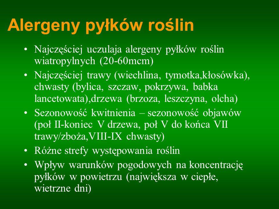 Alergeny pyłków roślin Najczęściej uczulaja alergeny pyłków roślin wiatropylnych (20-60mcm) Najczęściej trawy (wiechlina, tymotka,kłosówka), chwasty (