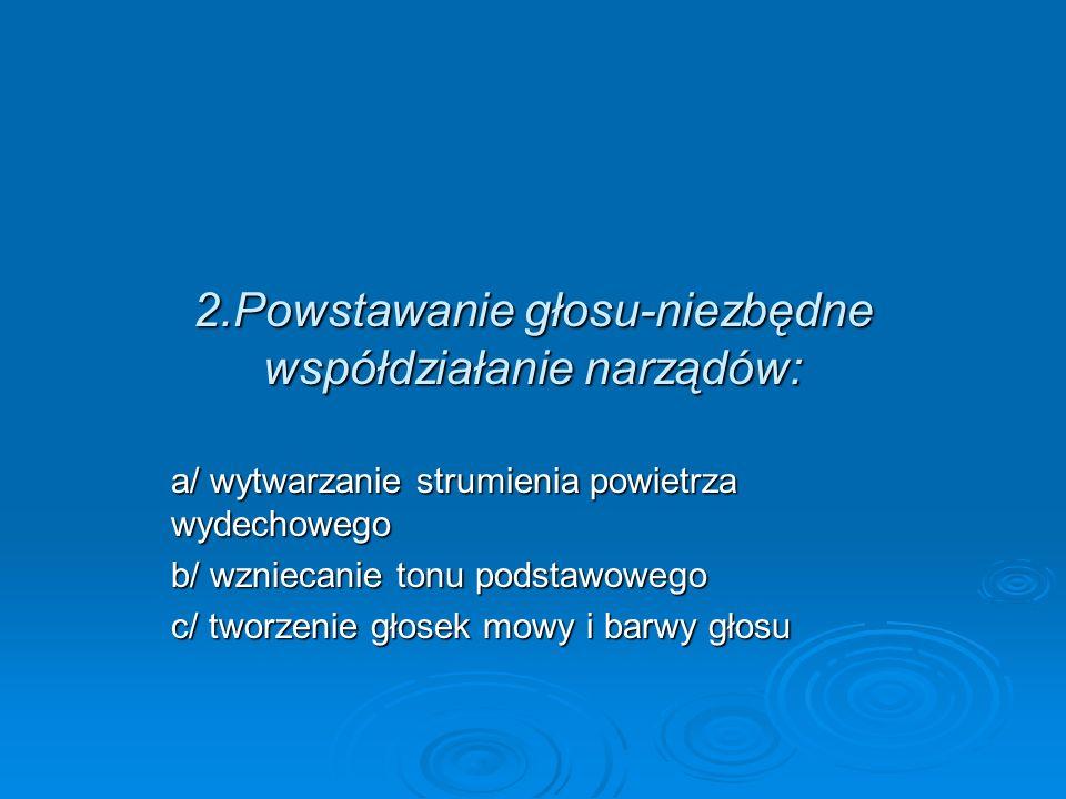 2.Powstawanie głosu-niezbędne współdziałanie narządów: a/ wytwarzanie strumienia powietrza wydechowego b/ wzniecanie tonu podstawowego c/ tworzenie gł