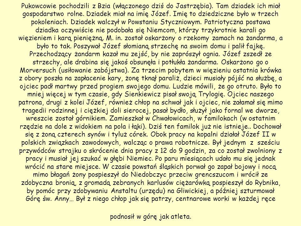 Pukowcowie pochodzili z Bzia (włączonego dziś do Jastrzębia). Tam dziadek ich miał gospodarstwo rolne. Dziadek miał na imię Józef. Imię to dziedziczne