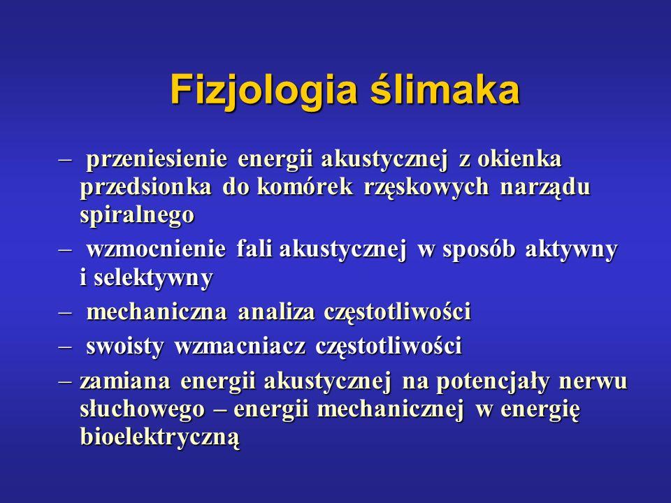 Fizjologia ślimaka – przeniesienie energii akustycznej z okienka przedsionka do komórek rzęskowych narządu spiralnego – wzmocnienie fali akustycznej w