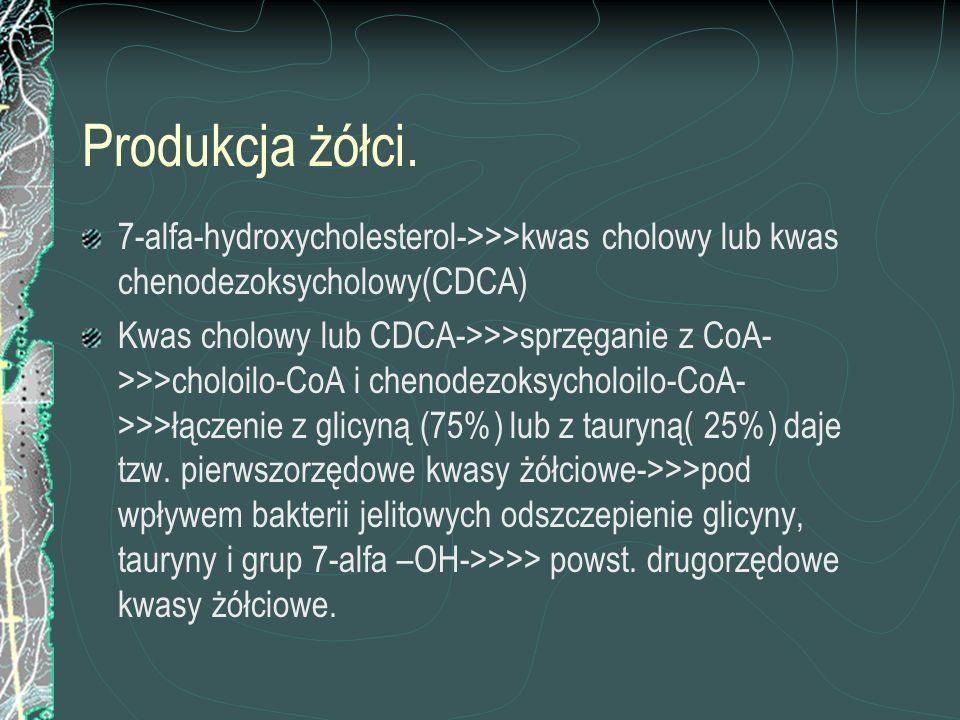 Produkcja żółci. 7-alfa-hydroxycholesterol->>>kwas cholowy lub kwas chenodezoksycholowy(CDCA) Kwas cholowy lub CDCA->>>sprzęganie z CoA- >>>choloilo-C