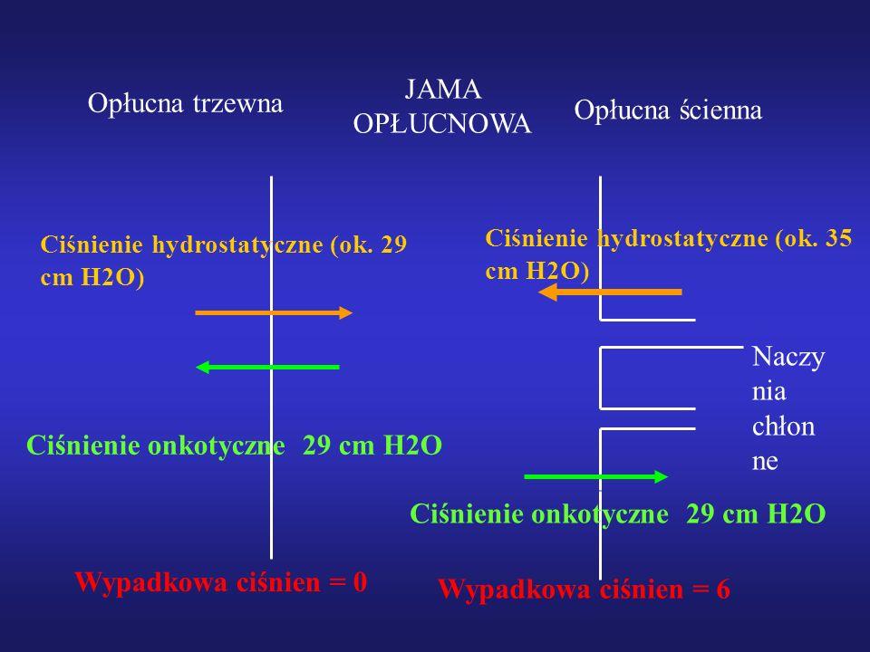 Opłucna ścienna Opłucna trzewna JAMA OPŁUCNOWA Naczy nia chłon ne Ciśnienie hydrostatyczne (ok. 29 cm H2O) Ciśnienie onkotyczne 29 cm H2O Ciśnienie hy