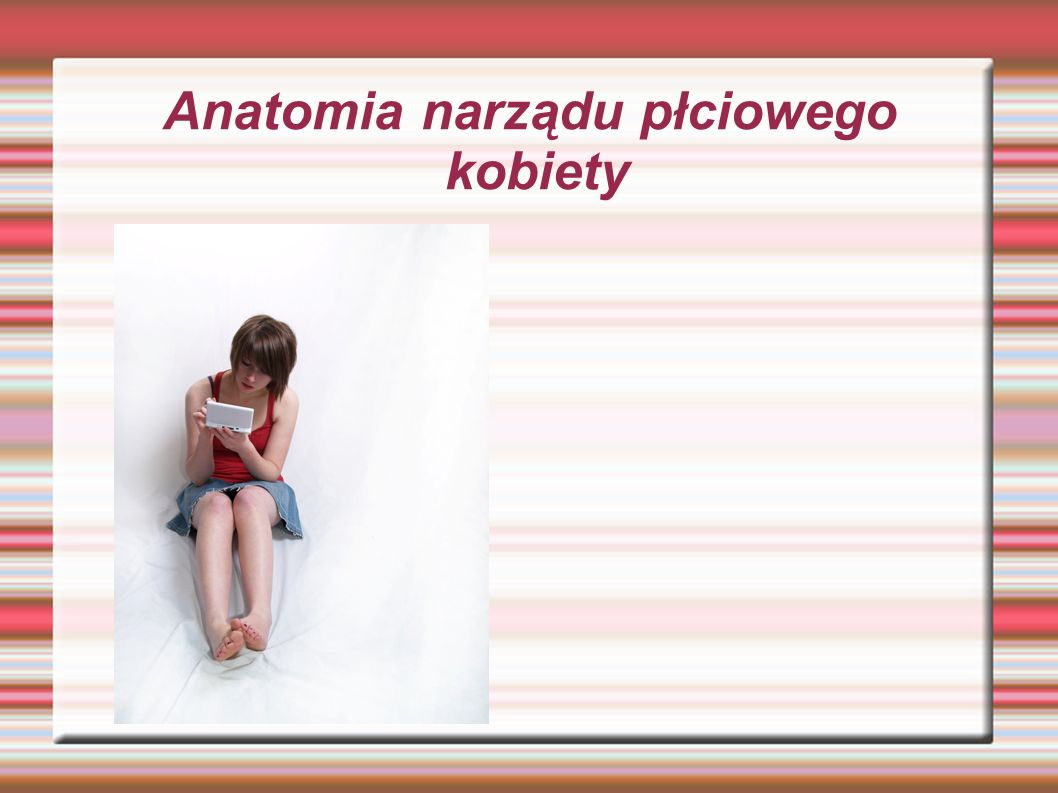 Anatomia narządu płciowego kobiety