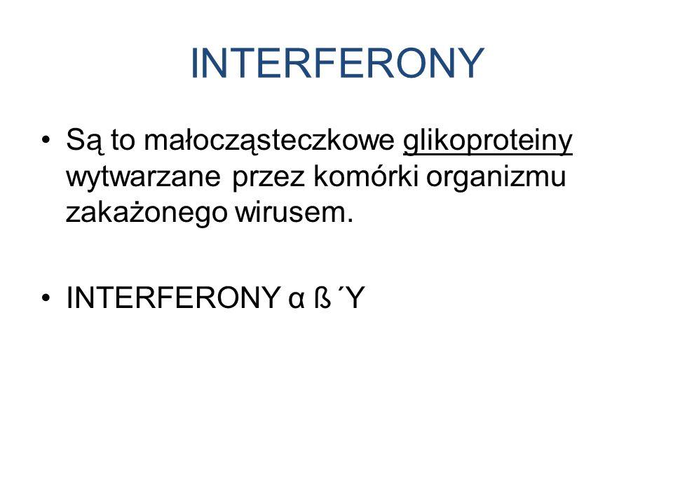 INTERFERONY Są to małocząsteczkowe glikoproteiny wytwarzane przez komórki organizmu zakażonego wirusem. INTERFERONY α ß Ύ