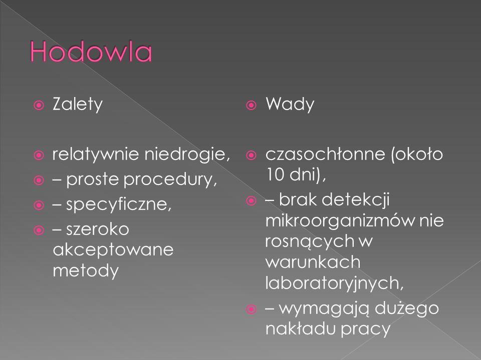 Poszukiwanie form dorosłych lub jaj pasożyta (lamblia, włosogłówka, tasiemiec, owsiki) Antygeny pasożytnicze (lamblia) Przeciwciała ( bąblowica, toksokaroza) IgE eozynofilia