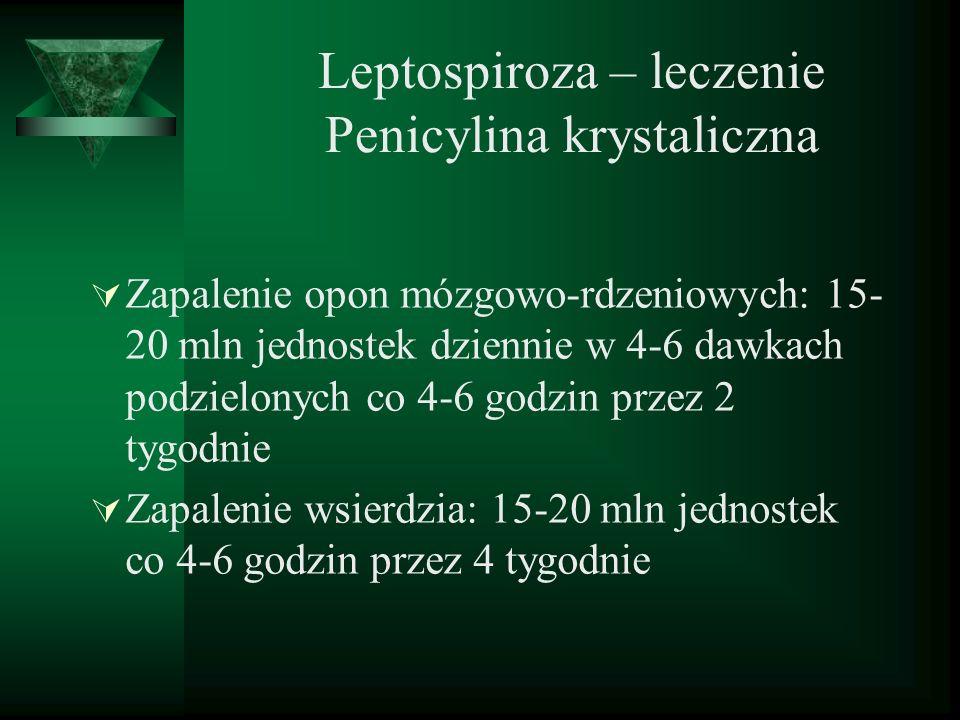 Leptospiroza – leczenie Penicylina krystaliczna Zapalenie opon mózgowo-rdzeniowych: 15- 20 mln jednostek dziennie w 4-6 dawkach podzielonych co 4-6 go
