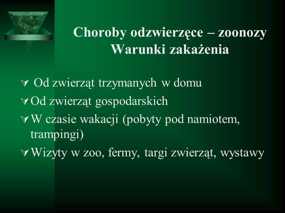 Choroby odzwierzęce – zoonozy Warunki zakażenia Od zwierząt trzymanych w domu Od zwierząt gospodarskich W czasie wakacji (pobyty pod namiotem, trampin