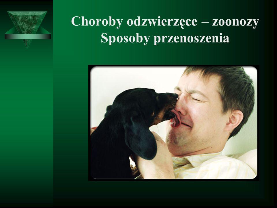 Choroby odzwierzęce – zoonozy Sposoby przenoszenia
