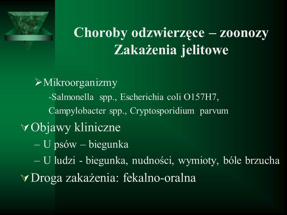 Choroby odzwierzęce – zoonozy Zakażenia jelitowe Mikroorganizmy -Salmonella spp., Escherichia coli O157H7, Campylobacter spp., Cryptosporidium parvum
