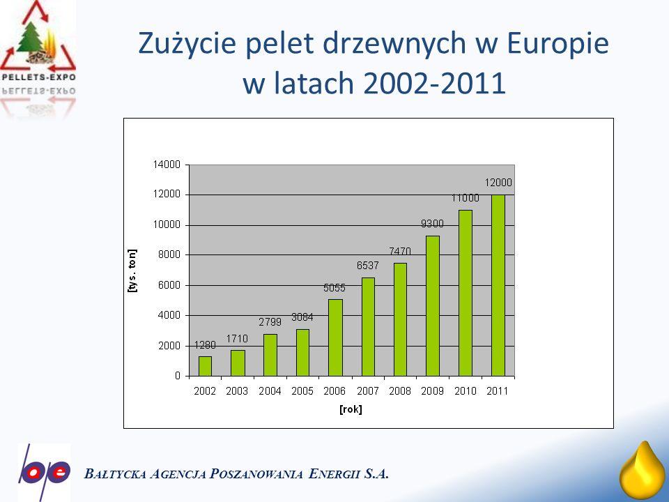 18 Zużycie pelet drzewnych w Europie w latach 2002-2011 B AŁTYCKA A GENCJA P OSZANOWANIA E NERGII S.A.