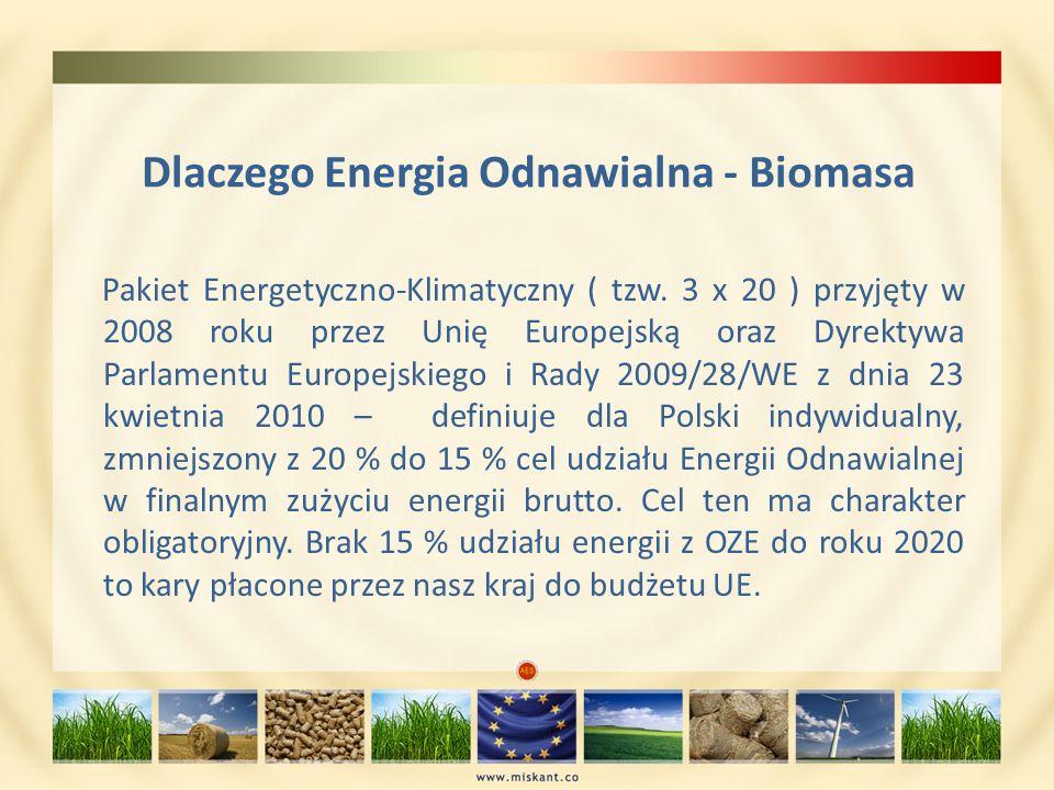 Dlaczego Energia Odnawialna - Biomasa Pakiet Energetyczno-Klimatyczny ( tzw. 3 x 20 ) przyjęty w 2008 roku przez Unię Europejską oraz Dyrektywa Parlam