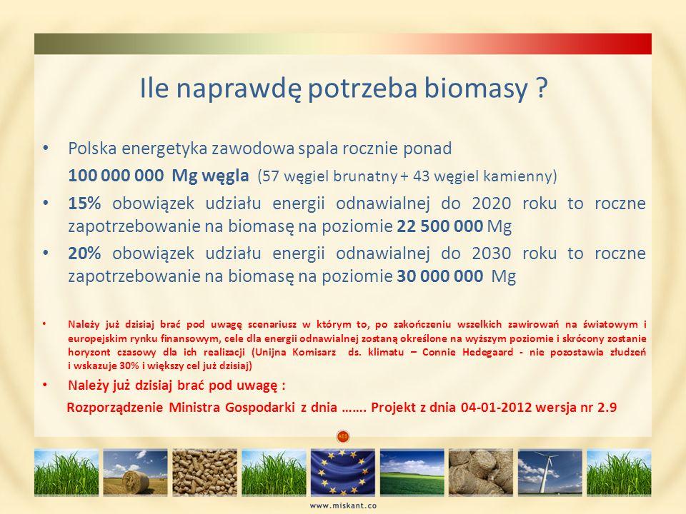 Ile naprawdę potrzeba biomasy ? Polska energetyka zawodowa spala rocznie ponad 100 000 000 Mg węgla (57 węgiel brunatny + 43 węgiel kamienny) 15% obow