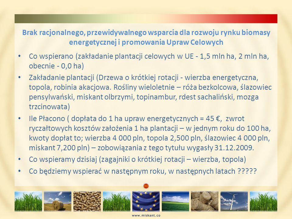 Brak racjonalnego, przewidywalnego wsparcia dla rozwoju rynku biomasy energetycznej i promowania Upraw Celowych Co wspierano (zakładanie plantacji cel