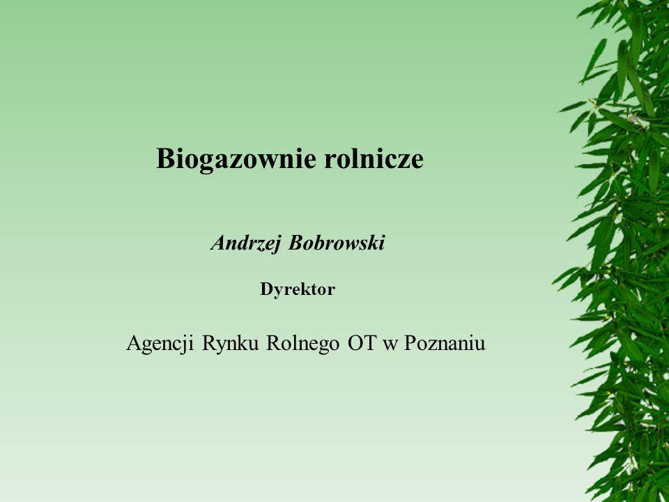 Biogazownie rolnicze Agencji Rynku Rolnego OT w Poznaniu Andrzej Bobrowski Dyrektor