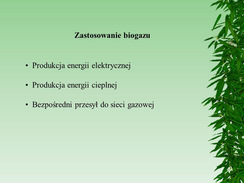 Zastosowanie biogazu Produkcja energii elektrycznej Produkcja energii cieplnej Bezpośredni przesył do sieci gazowej