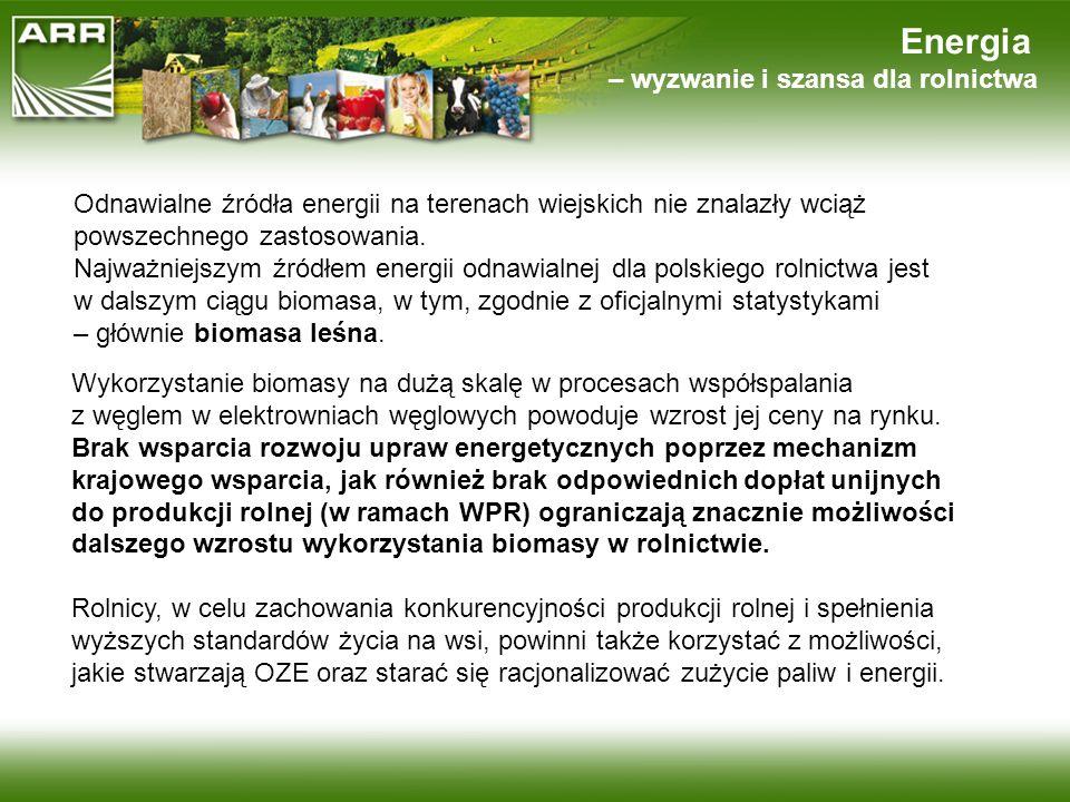 Energia – wyzwanie i szansa dla rolnictwa Odnawialne źródła energii na terenach wiejskich nie znalazły wciąż powszechnego zastosowania. Najważniejszym