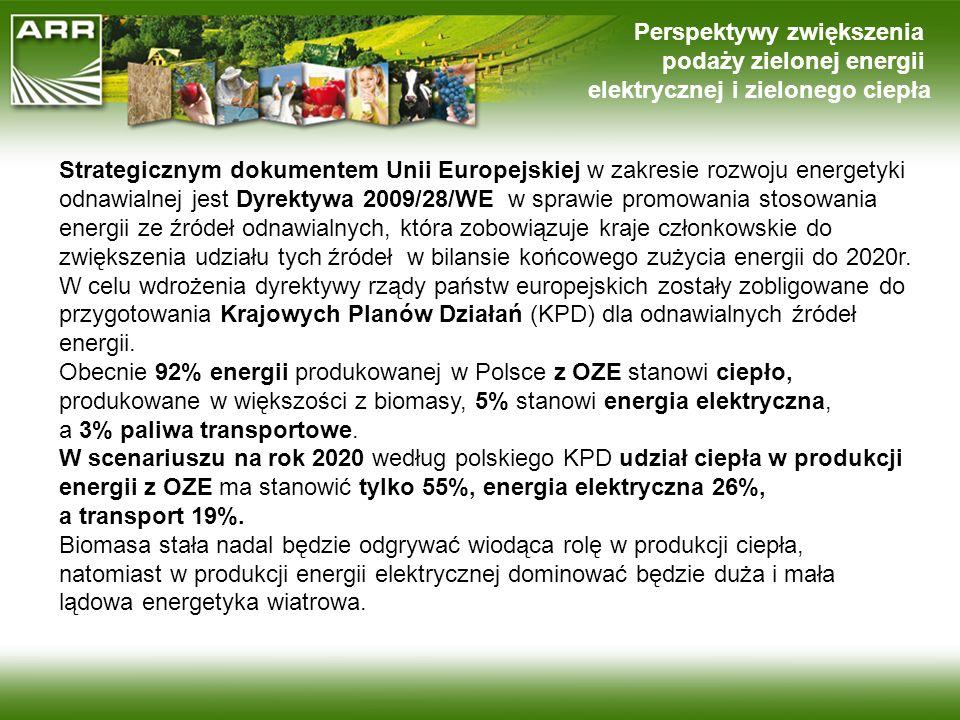 Perspektywy zwiększenia podaży zielonej energii elektrycznej i zielonego ciepła Strategicznym dokumentem Unii Europejskiej w zakresie rozwoju energety