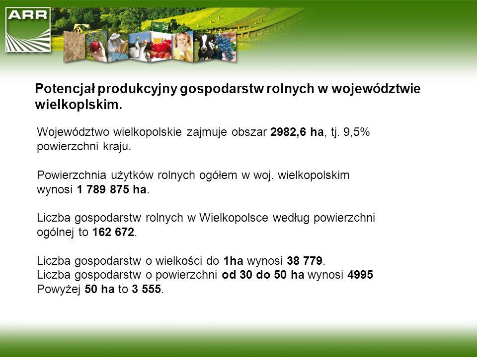 Potencjał produkcyjny gospodarstw rolnych w województwie wielkoplskim. Województwo wielkopolskie zajmuje obszar 2982,6 ha, tj. 9,5% powierzchni kraju.
