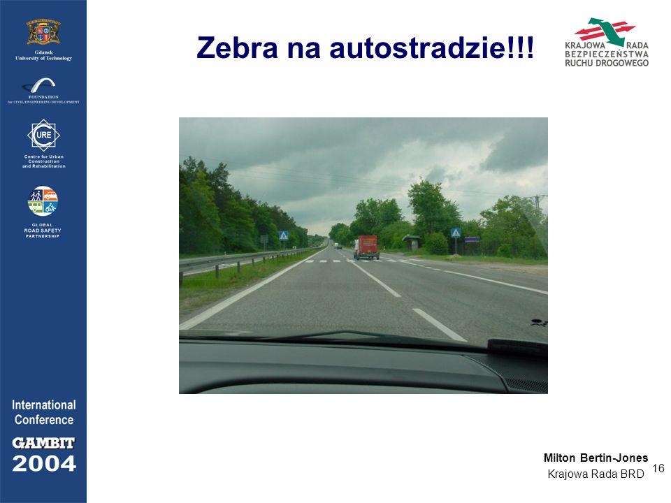 16 Zebra na autostradzie!!! Milton Bertin-Jones Krajowa Rada BRD