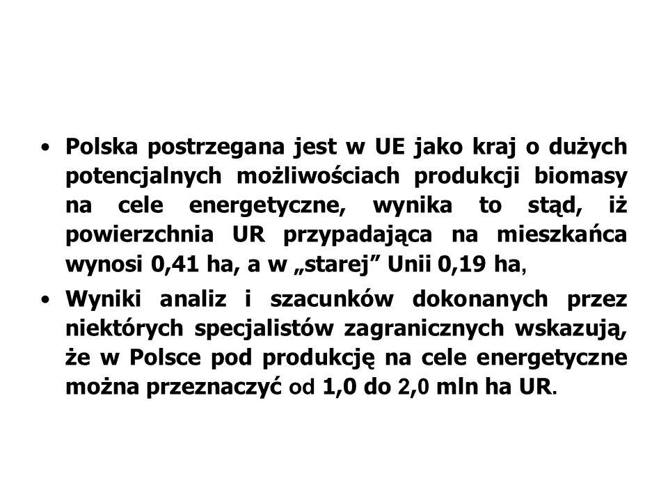 Polska postrzegana jest w UE jako kraj o dużych potencjalnych możliwościach produkcji biomasy na cele energetyczne, wynika to stąd, iż powierzchnia UR