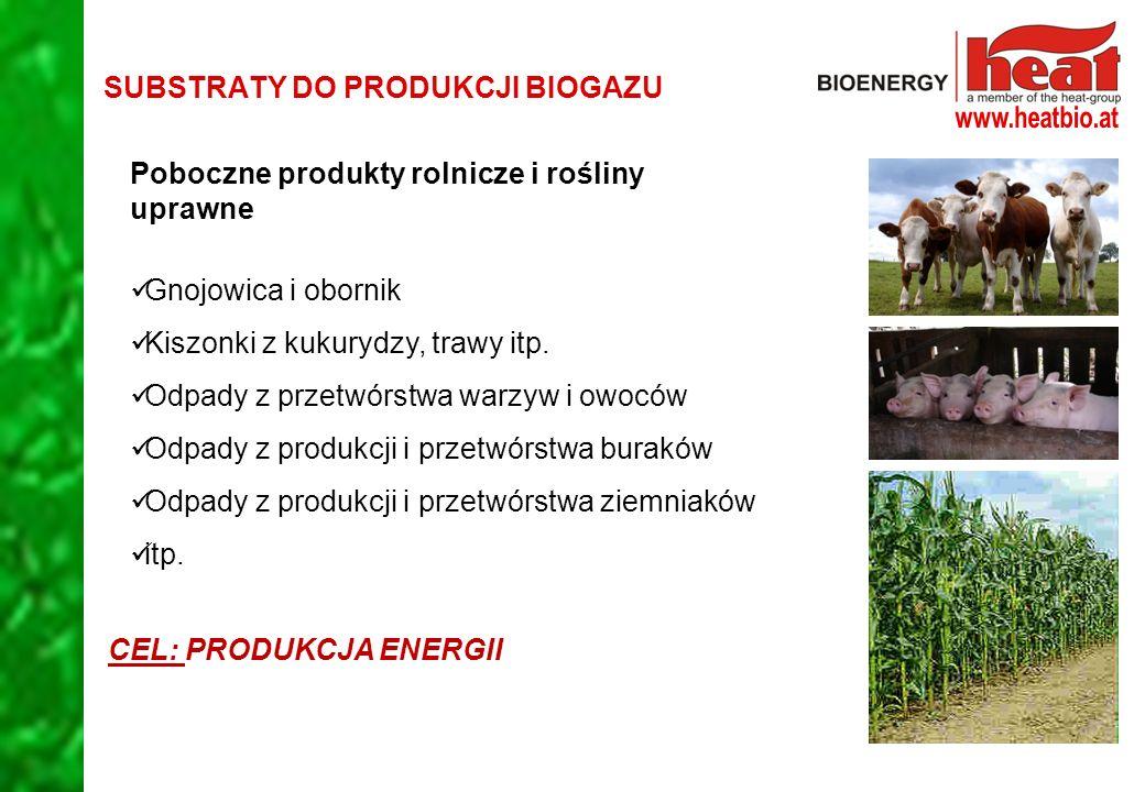 SUBSTRATY DO PRODUKCJI BIOGAZU Poboczne produkty rolnicze i rośliny uprawne Gnojowica i obornik Kiszonki z kukurydzy, trawy itp.