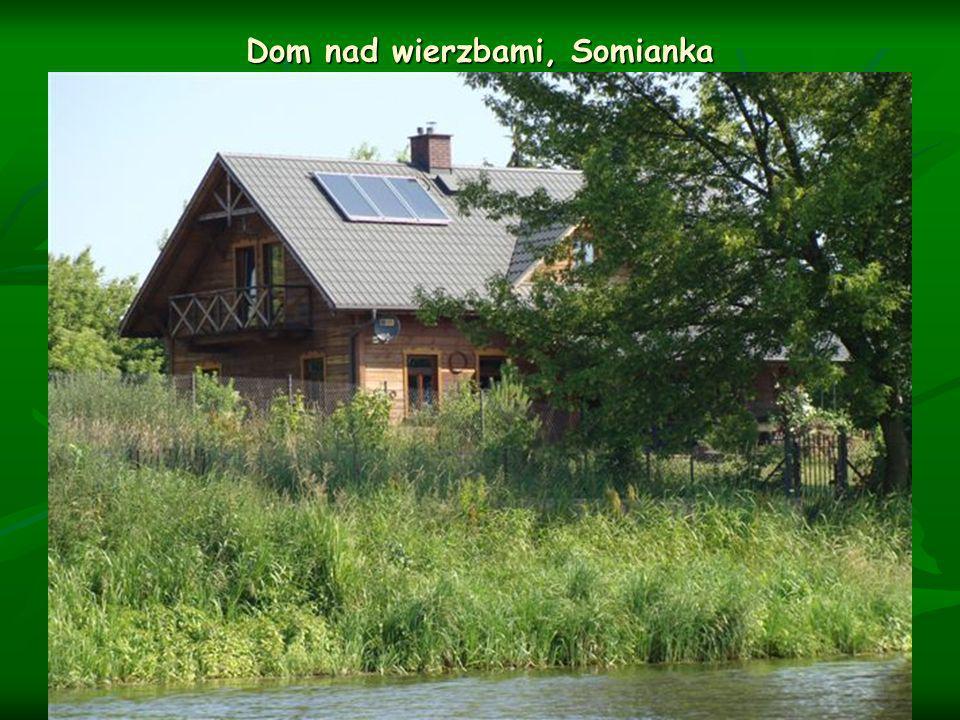 Dom nad wierzbami, Somianka