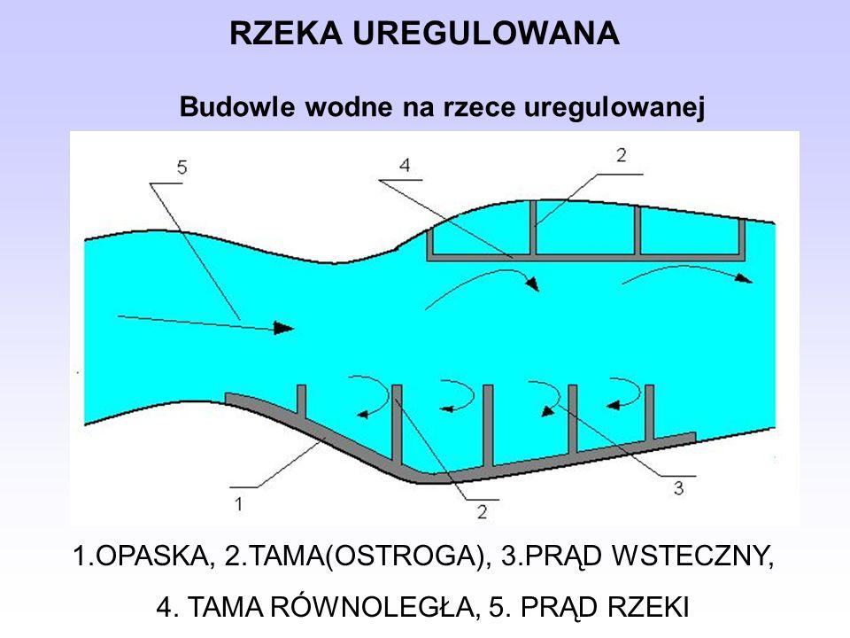 RZEKA UREGULOWANA 1.OPASKA, 2.TAMA(OSTROGA), 3.PRĄD WSTECZNY, 4. TAMA RÓWNOLEGŁA, 5. PRĄD RZEKI Budowle wodne na rzece uregulowanej